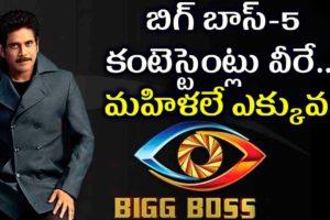 Bigg Boss Telugu 5 elimination