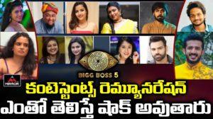 BB5 Telugu contestants Salary
