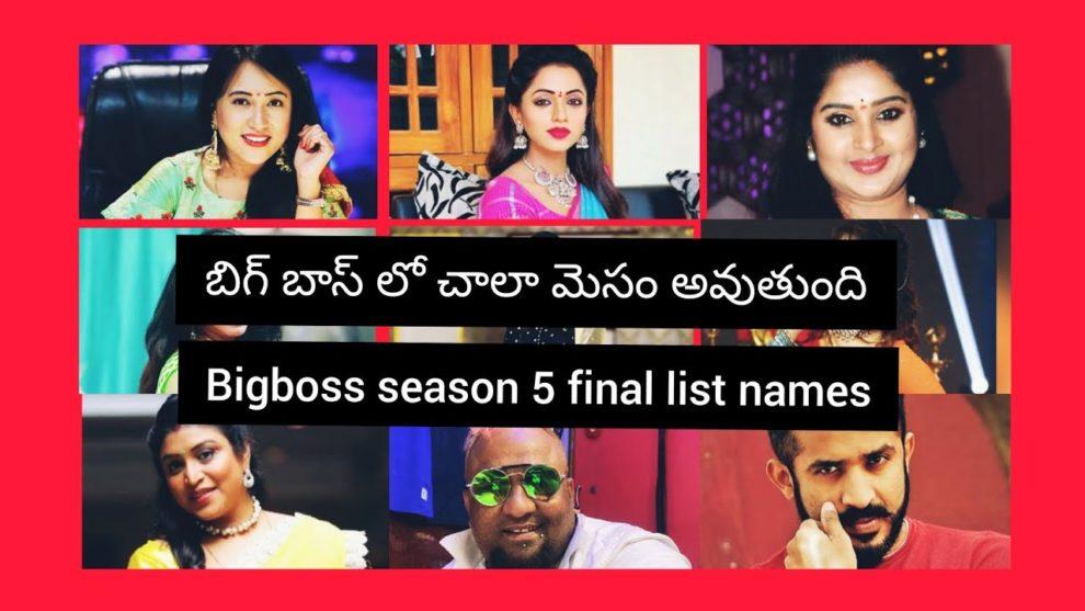 bb5 contestants final list
